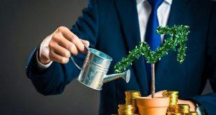 Bí kíp đầu tư chứng khoán dài hạn hiệu quả không phải ai cũng biết